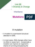 14. Unit 2B Mutations