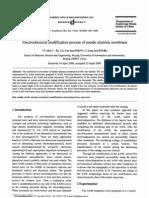 Electrochemical Modification Process of Anodic Alumina Membrane
