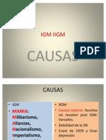 IGM IIGM 2