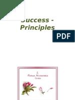 Success - Principles