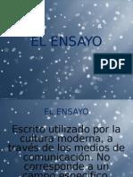 ENSAYO COMPLETO