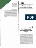 Kerbo - Estratificación social y desigualdad (capítulo 6 y 7)