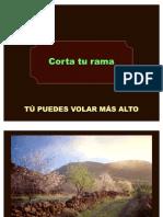 Corta_tu_rama