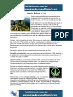 Negocios Multinivel en Perú