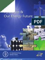 Hydrogen Energy Future PDF