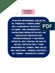 Plan de Seguridads Consorcio Pacifico