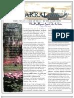 November Newsletter 2011-b