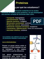 Proteinas_2008