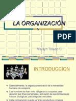CLASE 1 - ORGANIZACIÓN