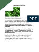 Descubre Datos Curiosos Sobre Los Virus