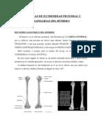 Fracturas de Extremidad Proximal y Diafisarias Del hÚmero