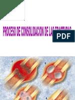 Clase Consolidacion y Pseudoartrosis