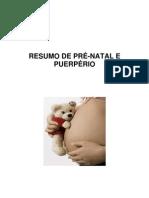 RESUMO DE PRÉ pdf