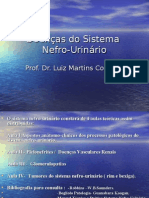 SNU3 Instrução Nefro Urinário I