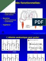 neuropathiesperiph