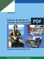 Faenas de Buceo PDF