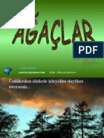 AGACLAR__NL_LERDENS_ZLERLE