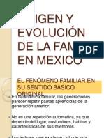 2_ORIGEN_Y_EVOLUCION_DE_LA_FAMILIA