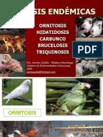 zoonosis endémicas 2010