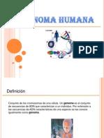 GENOMA HUMANA