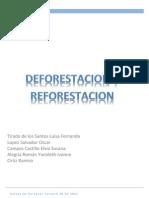 DEFORESTACION Y                       REFORESTACION