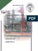 CARCINOMA MUCOEPIDERMOIDE DE BAJO GRADO DE GLÀNDULAS SALIVALES PALATINAS MENORES