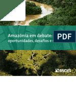 Amazonia Em Debate