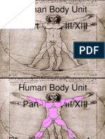 Anatomy Human Body Part III Muscular System Unit PowerPoint for Educators from www.sciencepowerpoint.com