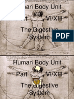 Human Body Part VI Digestive System Unit PowerPoint for Educators from www.sciencepowerpoint.com