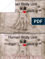 Anatomy Human Body Part VII Circulatory System Heart PowerPoint for Educators from www.sciencepowerpoint.com