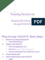 Cha Icegate Presentation