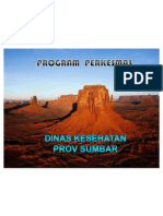 Program Perkesmas Di Puskesmas