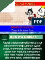 Program Rabies Di Puskesmas