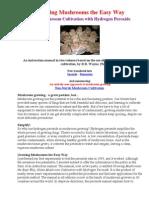 Growing Mushrooms the Easy Way