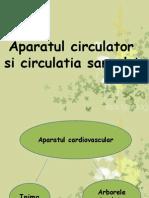 Sistemul circulator