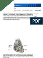 Electrocardiografia.es. Teoría del electrocardiograma-2