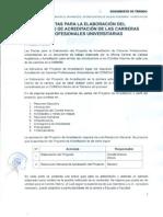pautas_proyecto_acreditacion