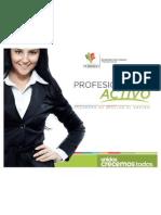 Presentacion_programa Universitario Final