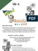 Mascot A