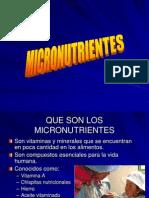 MICRONUTRIENTES