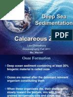 Calcareous Zone