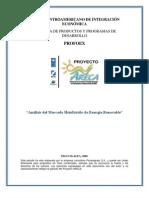 Analisis de Mercado Energia Renovable