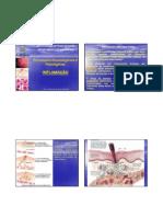 Processos Imunologicos e Patologicos_Inflamacao