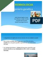 Ingeniería genética micobiologia