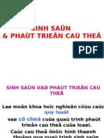 Bai Giang Sinh Hoc Phat Trien_SUA