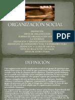 organización social, y tipos de organización