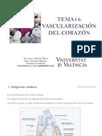 Tema14 Vascularizacixn Del Corazxn