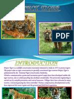 Abhishek Mishra Tiger Ppt.