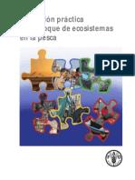 Aplicación práctica EEP - FAO