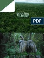 AmazÔnia InsÔnia Do Mundo